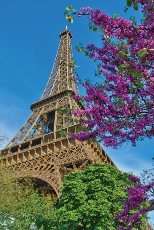 Amawaterways Offering Free And Reduced Airfare On Select European Cruises Cruisecompete Blog